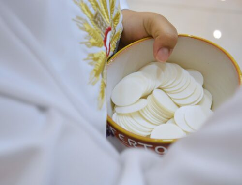 Mardi 31 mars: report des premières communions et confirmations, messes en streaming